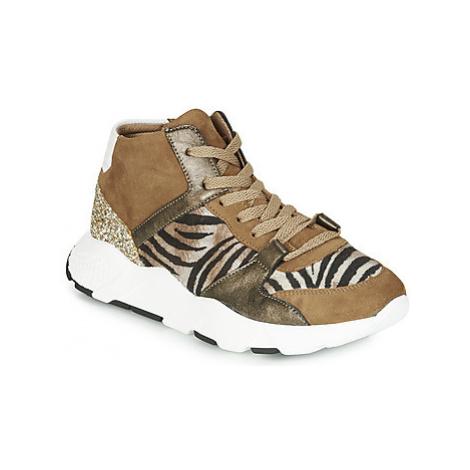 Philippe Morvan VELVET V2 CHEV VEL women's Shoes (Trainers) in Brown