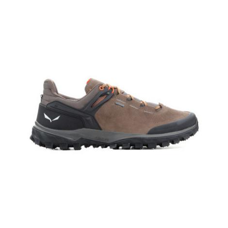 Salewa MS WANDER GTX 63460-7506 men's Shoes (Trainers) in Brown