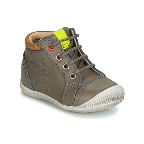 GBB TARAVI boys's Children's Shoes (High-top Trainers) in Grey