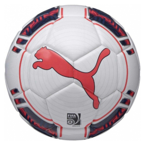 Puma EVOPOWER 1 FUTSAL white - Futsal ball