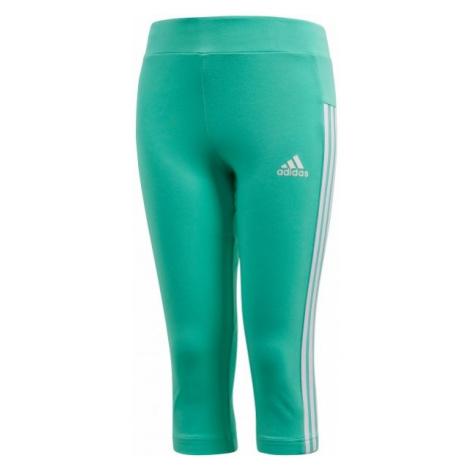 adidas ESSENTIALS LINEAR 3/4 TIGHT green - Girls' leggings
