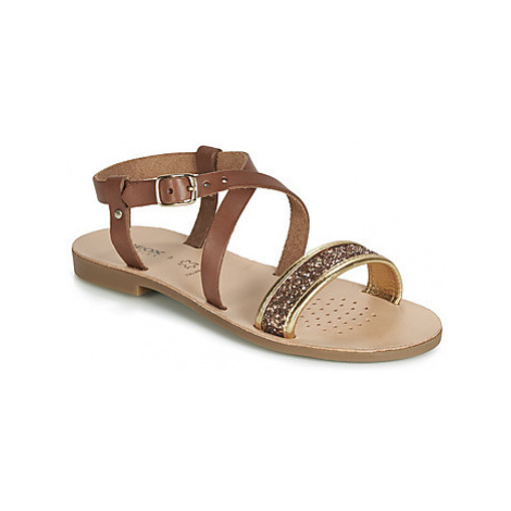 Geox J SANDAL VIOLETTE GI girls's Children's Sandals in Brown