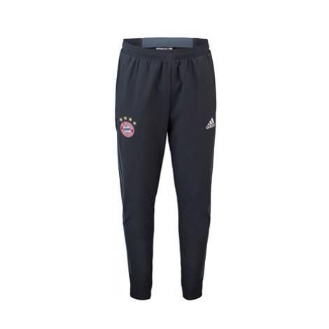 FC Bayern UCL Training Pant - Blue Adidas