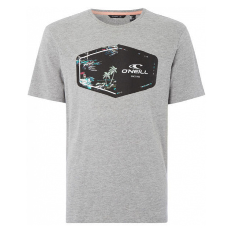 O'Neill LM MARCO T-SHIRT grey - Men's T-shirt