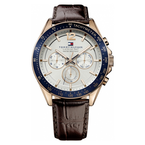 Mens Tommy Hilfiger Luke Watch 1791118