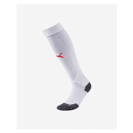 Men's thermal socks Puma