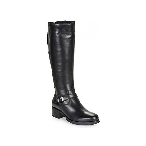 Betty London LYVIANNA women's High Boots in Black