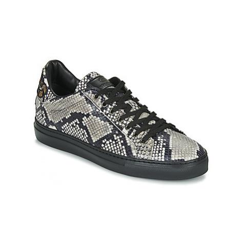 Roberto Cavalli 8309 men's Shoes (Trainers) in Black