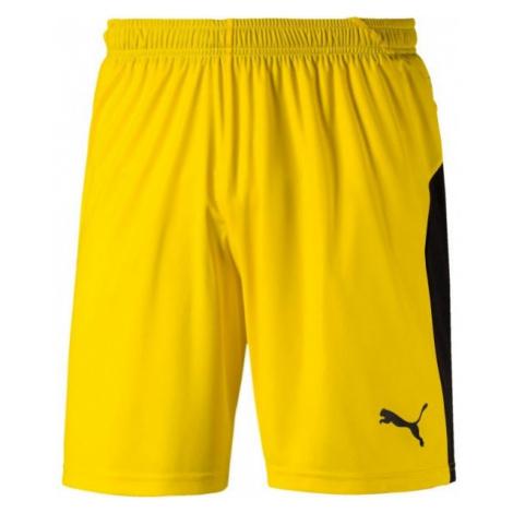 Puma LIGA SHORTS yellow - Men's shorts