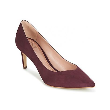 Dumond MELOCA women's Court Shoes in Purple