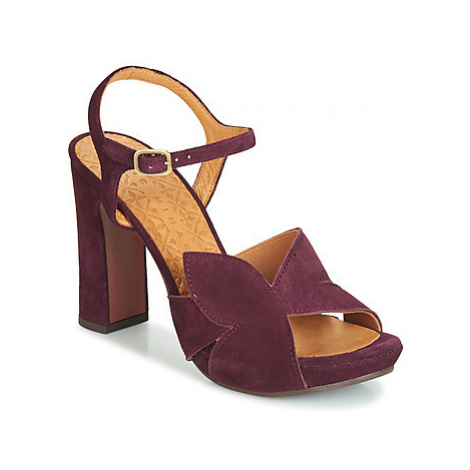 Chie Mihara Cross women's Sandals in Purple