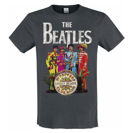 The Beatles - Amplified Collection - Lonely Hearts - T-Shirt - charcoal