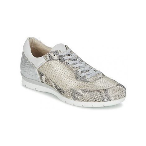 Mjus FORCE women's Shoes (Trainers) in Silver