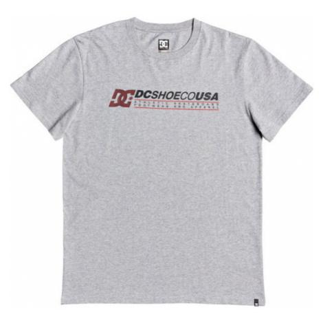 DC LONGERSS M TEES grey - Men's T-shirt