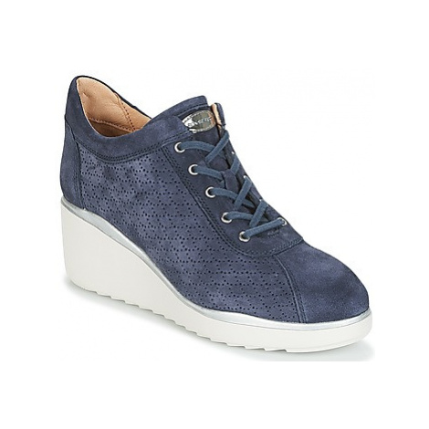 Stonefly ECLIPSE women's Shoes (Trainers) in Blue