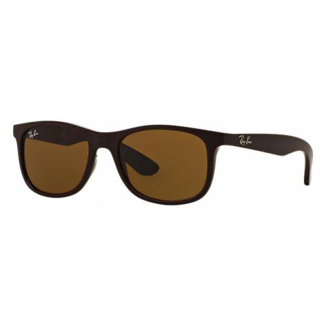 Ray-Ban Rj9062s Unisex Sunglasses Lenses: Brown, Frame: Brown - RJ9062S 701473 48-16
