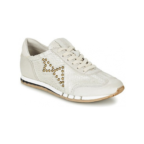 Airstep / A.S.98 TRIP women's Shoes (Trainers) in Grey