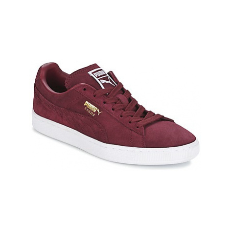 Puma SUEDE CLASSIC + men's Shoes (Trainers) in Bordeaux