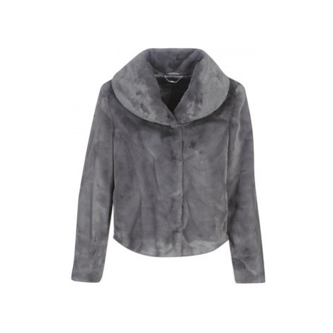 Guess SOPHY women's Jacket in Grey