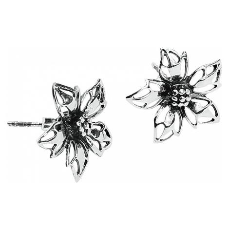 Wild Flower - - Earpin set - Standard