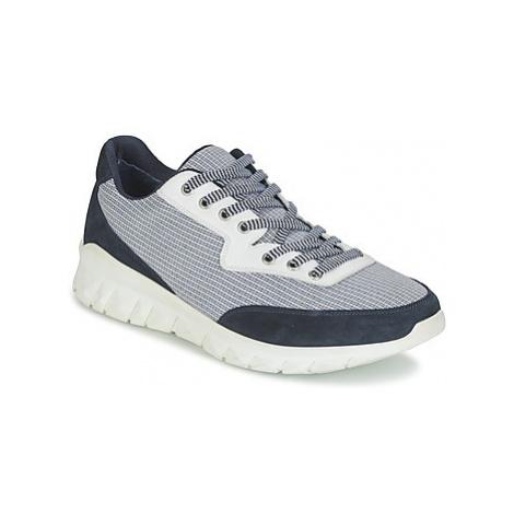 Paul Joe REPPER men's Shoes (Trainers) in Blue Paul & Joe