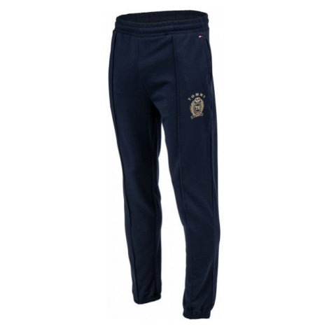 Tommy Hilfiger PANTS HWK dark blue - Men's sweatpants