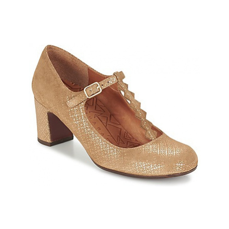 Chie Mihara JACARE women's Court Shoes in Brown