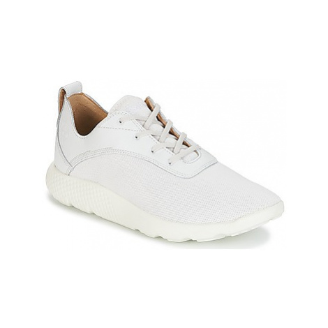 Timberland FLYROAM men's Shoes (Trainers) in White