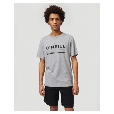 O'Neill Arrowhead T-shirt Grey