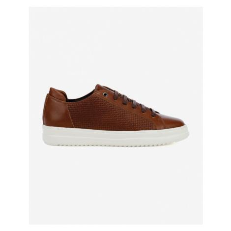 Geox Tayrvin Sneakers Brown